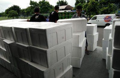 Kami akan melayani permintaan pengiriman barang atau dokumen anda dengan cepat dan aman.